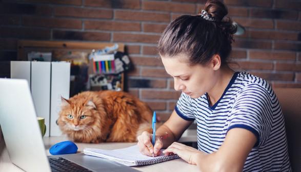 Junge Frau arbeitet zu Hause, die Katze sieht zu. © olezzo, stock.adobe.com