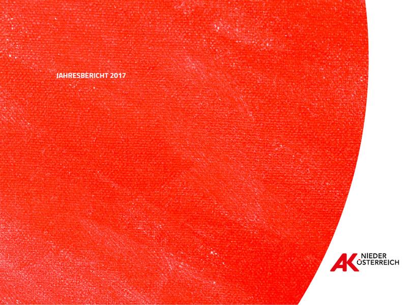 Deckblatt Jahresbericht 2017 © Rauch-Gessl